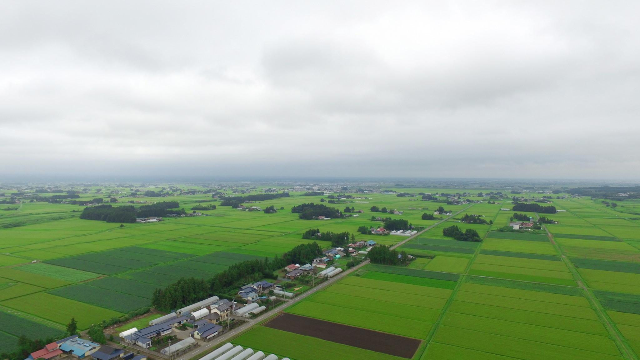 Osaki Kodo's Traditional Water Management System for Sustainable Paddy Agriculture, Japan
