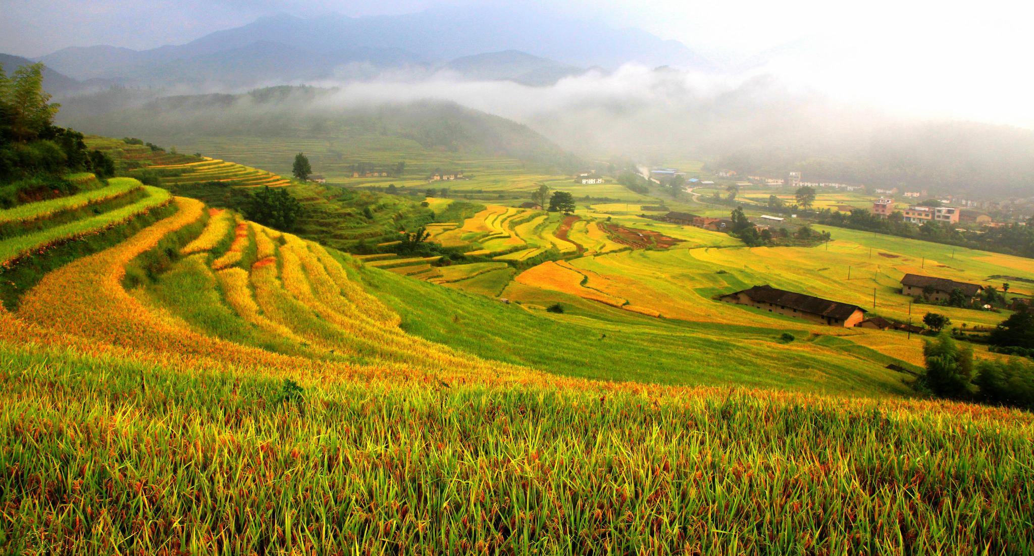 Rice Terraces System in Southern Mountainous and Hilly AreasChongyi Hakka Terraces, China
