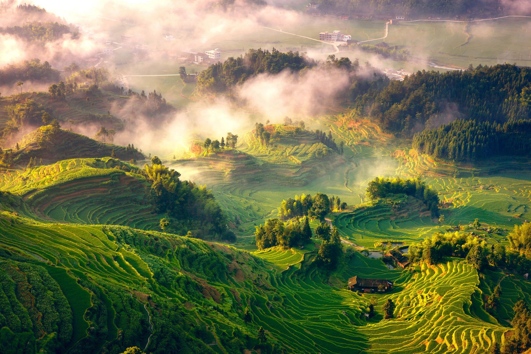 Rice Terraces System in Southern Mountainous and Hilly Areas,Xinhua Ziquejie Terraces, China