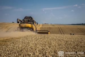 Збирання зернових