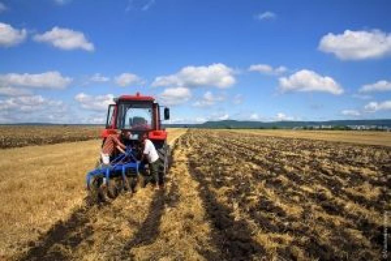 Почему не покупают сельхозземлю