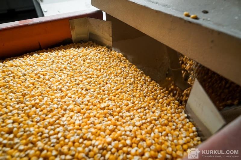 Значна частина експорту — зерно