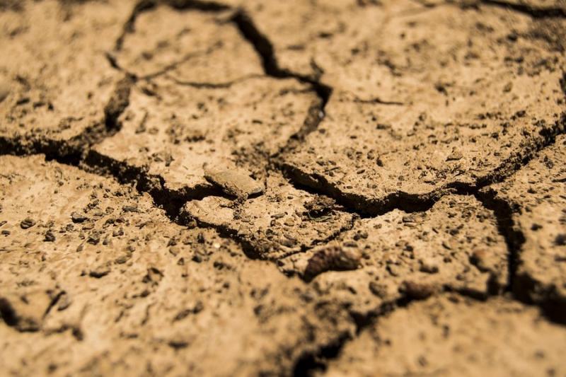 Австралія витратить мільйони на психічне здоров'я фермерів