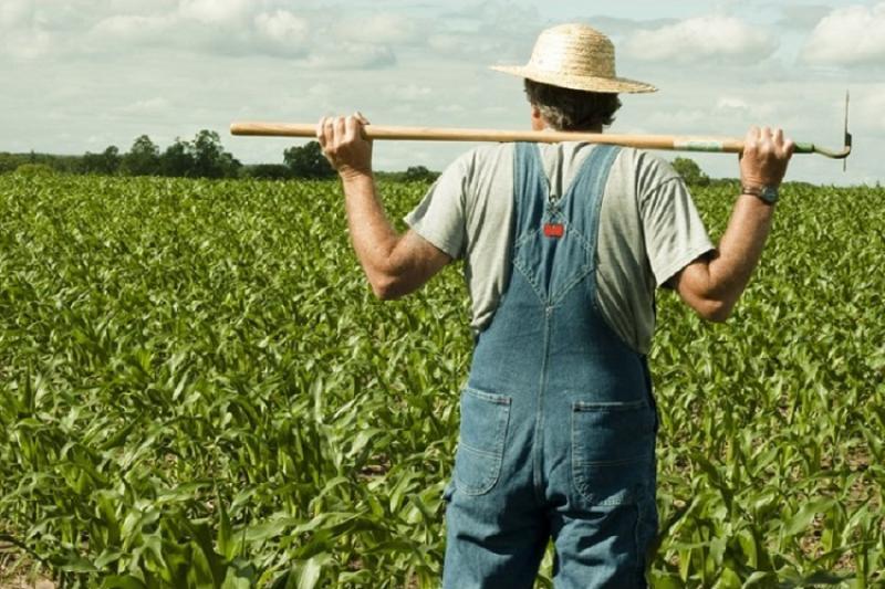 Фермер на полі