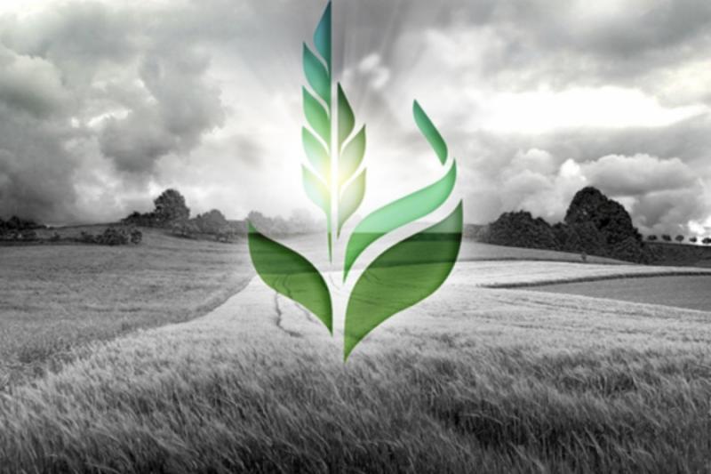 НАБУ заблокувало роботу Аграрного фонду