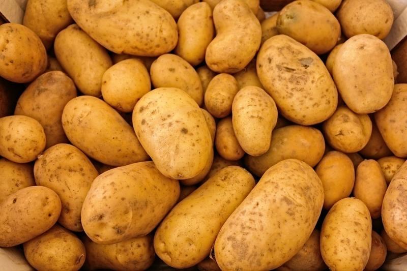 Ціни на картоплю в Україні досягли 10 річного максимуму