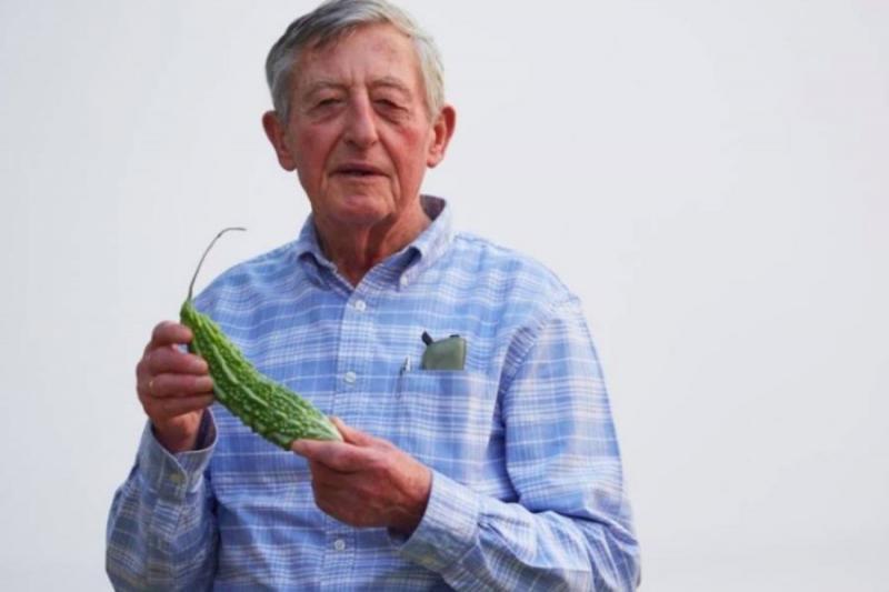 Овочівник Саймон Грот