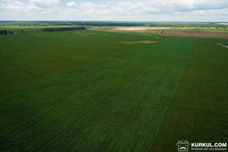 Зеленський перенесе зустріч з бізнесом для вирішення земельного питання