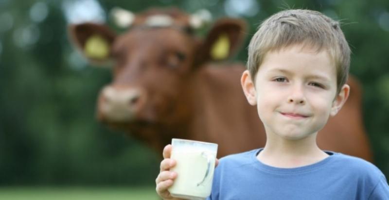 У школах планують відновити програму Склянка молока