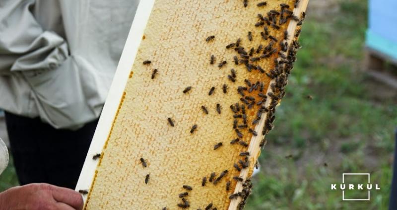 Український мед з'явився на ринку Саудівської Аравії
