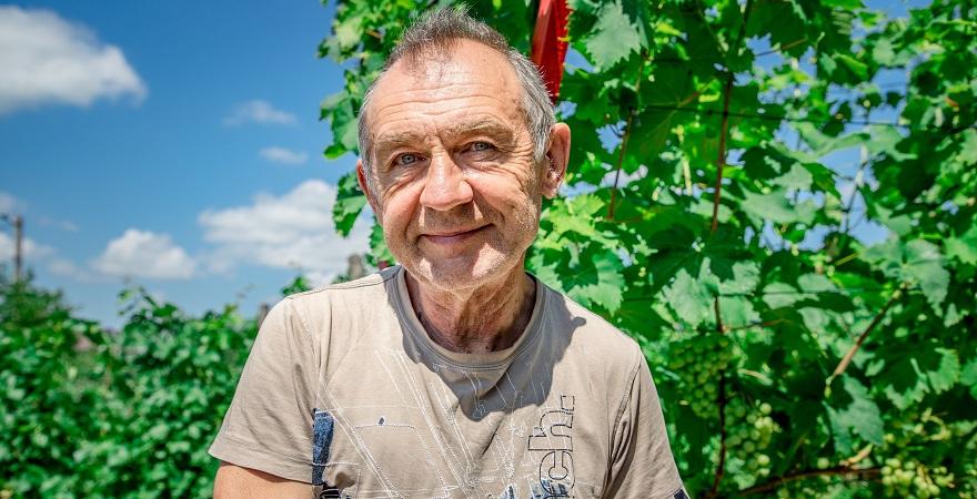 Богдан Павлій, винороб