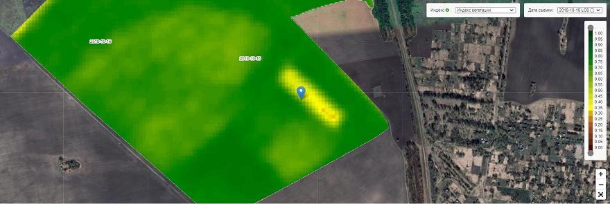 Супутниковий знімок поля