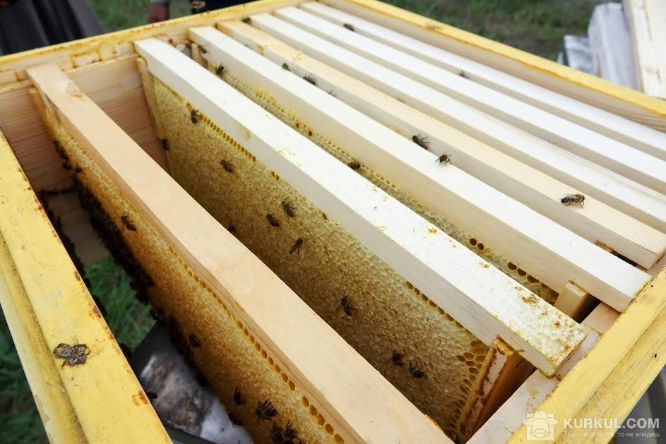 Рамки для меду