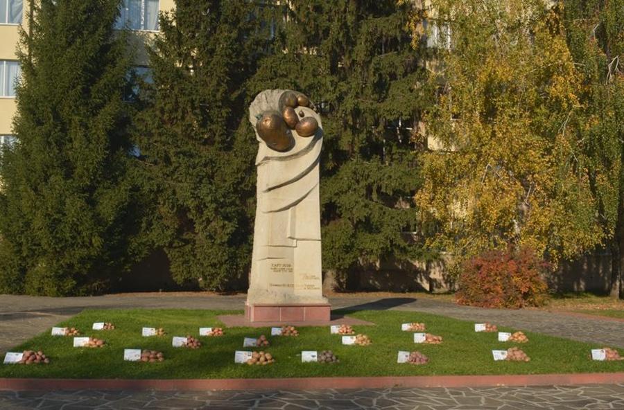 Пам'ятник картоплі у селищі Немішаєве Бородянського району, на території Інституту картоплярства НААН України