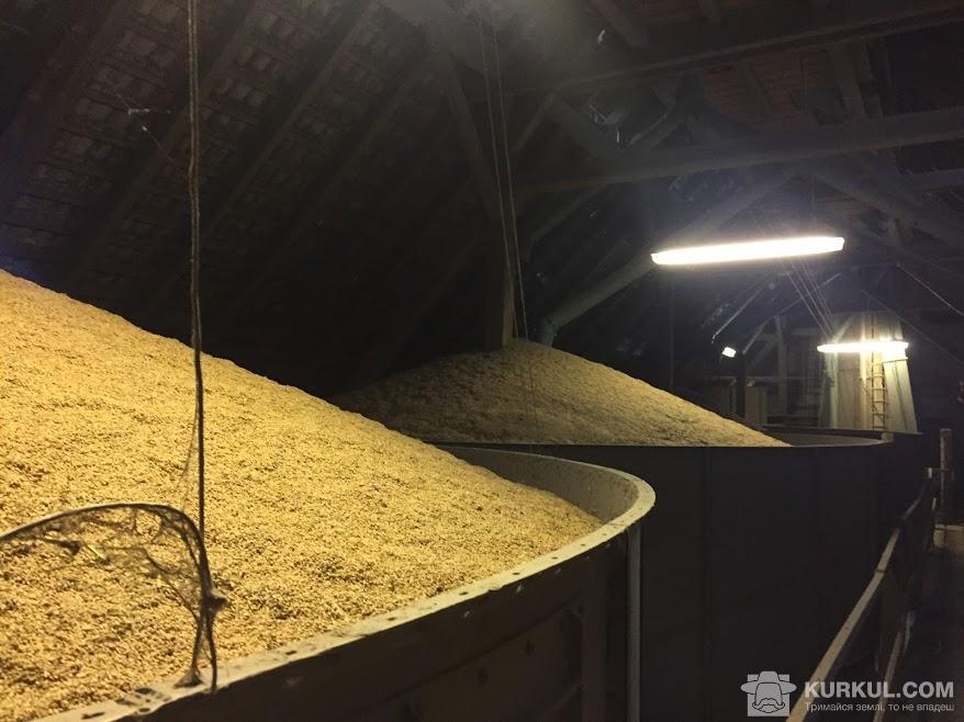 Зерно на зберіганні