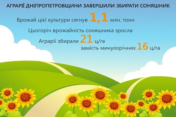 На Дніпропетровщині зібрали 1 млн т соняшника