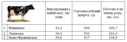 Три області стали лідерами по вирощуванню ВРХ