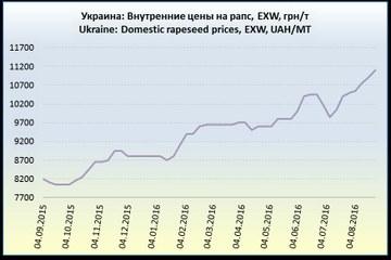 Ціни на український ріпак поступово зростають