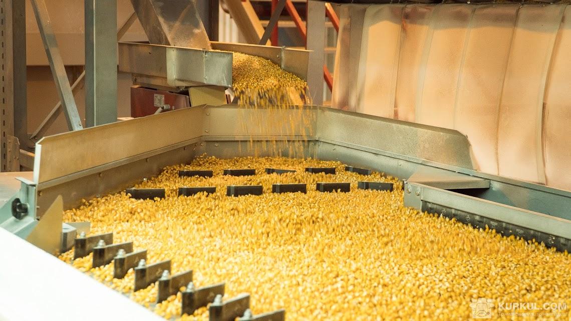 Процес калібрування зерна