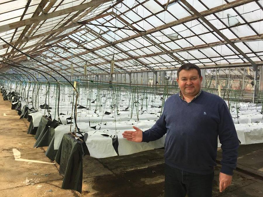 Ігор Шкурко, керівник НВО «Чернігівеліткартопля»