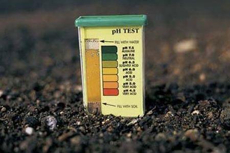Кислотний аналіз ґрунту