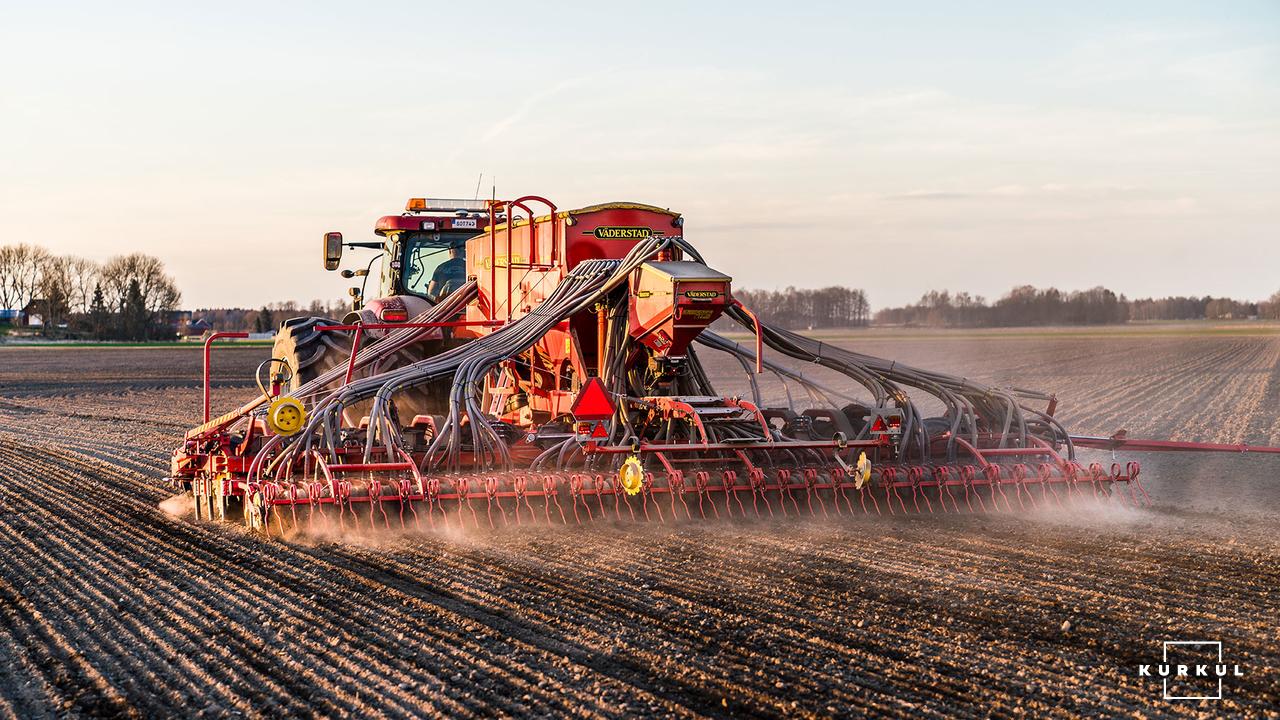 Кукурудза на силос від А до Я: усе про гібриди та технологію фото 14 LNZ Group