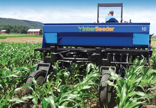 Підсівання покривних культур у кукурудзу на стадії V5 у Вісконсині