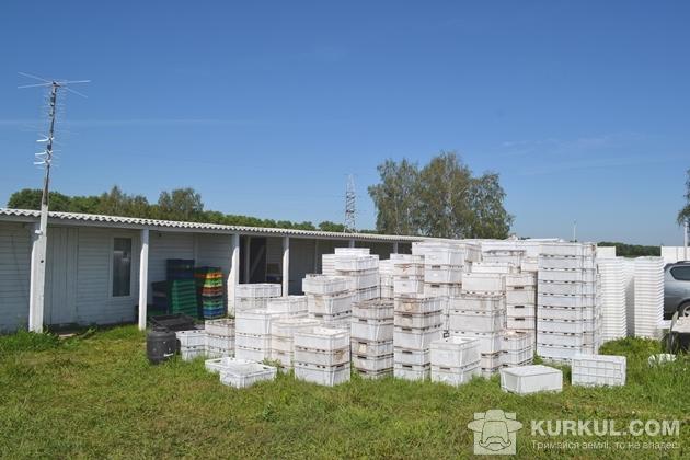 Ящики чекають на ягоду