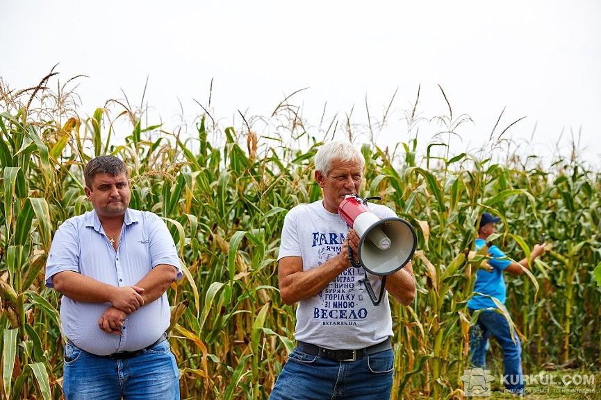 Посіви кукурудзи господарства «Галаган-Агро», представлені учасникам семінару