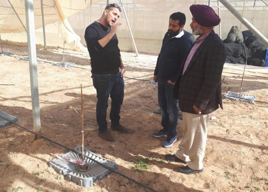 Фото 8. У січні 2019 року академіки з Індійського Університету Сільського господарства Пенджабу приїхали побачити Tal-Ya в експлуатації в Arava R&D Center в Ізраїлі.