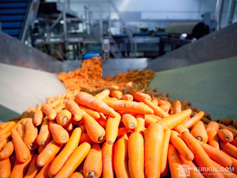 Переробка моркви
