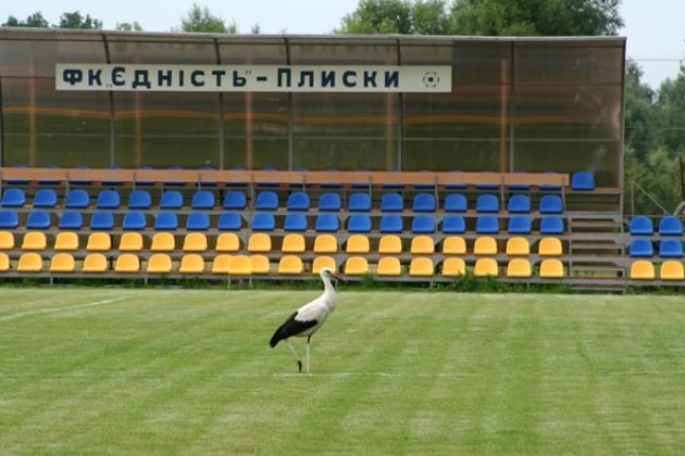 Стадіон у Плісках