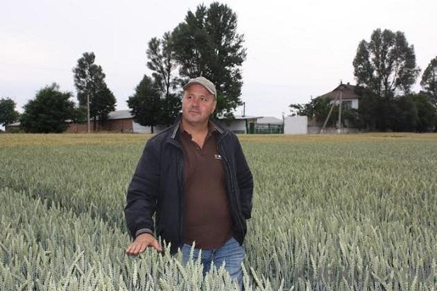 Головний агроном фермерського господарства «Калина» Ігор Фостик