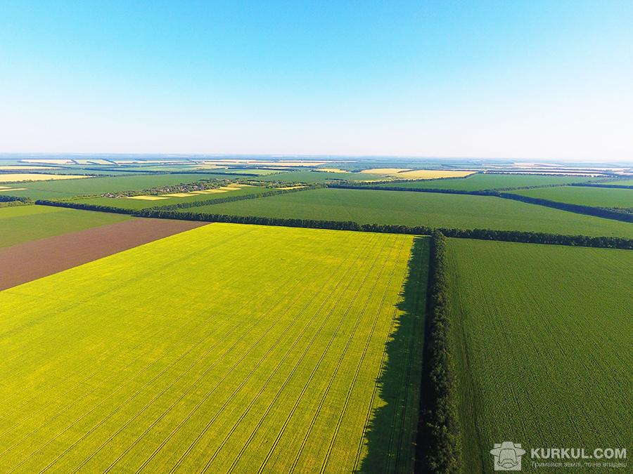 Поля господарства «Славутич» з висоти пташиного польоту