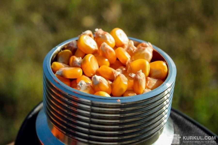 Вимірювання вологості зерна кукурудзи