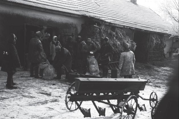 Сільське подвір'я на Донеччині, 1931, hronika.info