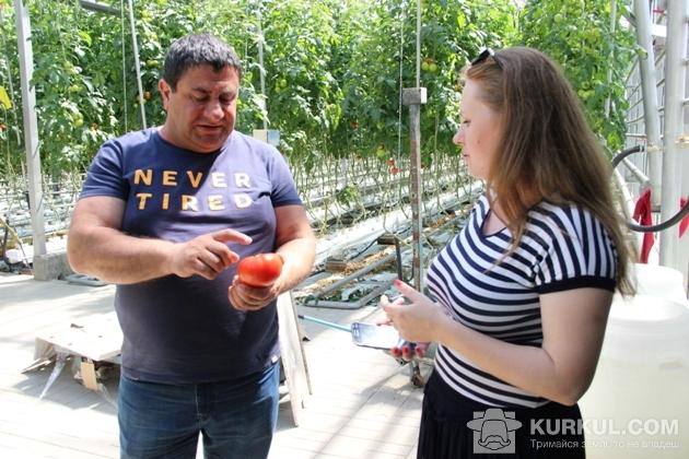 Арсен Товмасян демонструє урожай помідорів