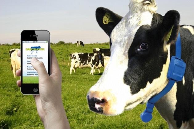 Упраляння фермою з телефона