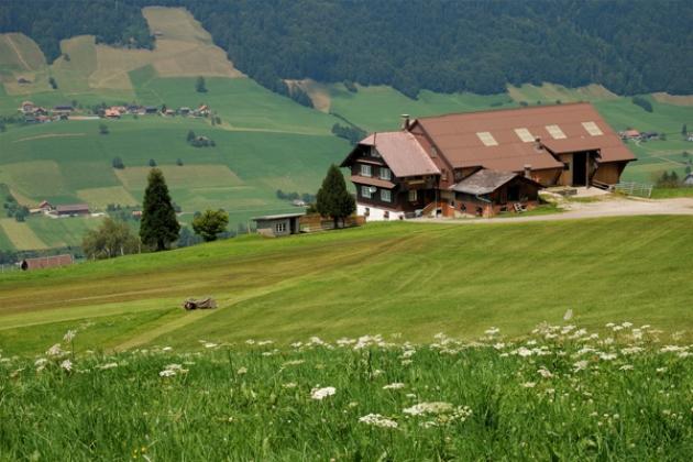Німецьке село