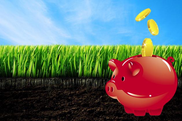 5 тез земельної реформи