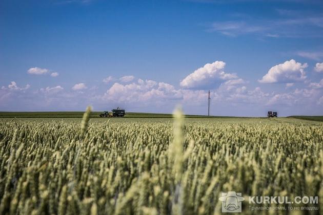 західний буг, пшениця 2017, агроекспедиція