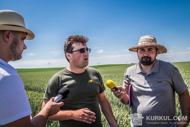 західний буг, агроекспедиція 2017, пшениця