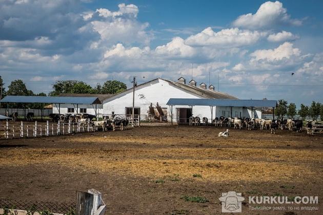західний буг, агроекспедиція 2017, ферма, ВРХ