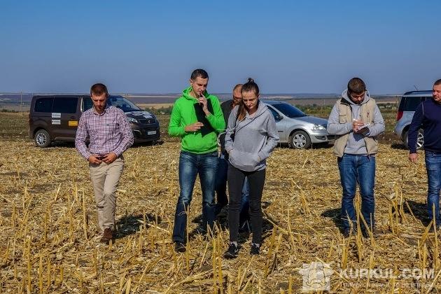 АгроЕкспедитори ідуть в поле кукурудзи