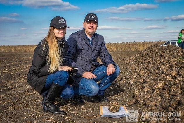 Експерти Авгутс-Україна оглядають буряк Андріївки