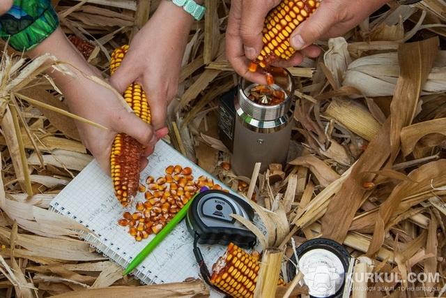 Визначаємо вологість зерна