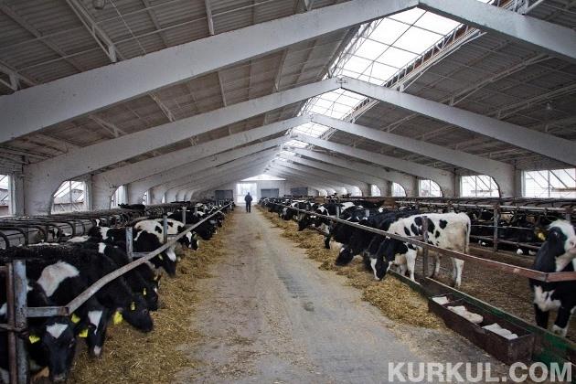 "Молочна ферма ""Велетень"""