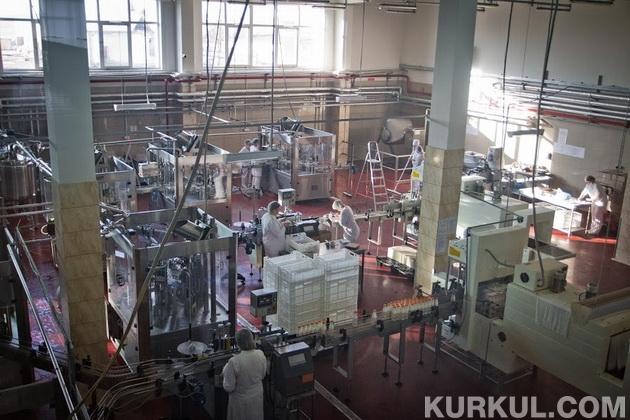 Виготовлення йогурту на підприємстві «Органік Мілк»