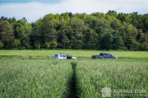 Жито на полях господарства «Агро-Захід»