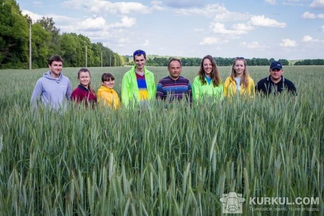 Агроекспедитори у житньому полі господарства «Подільський бройлер»